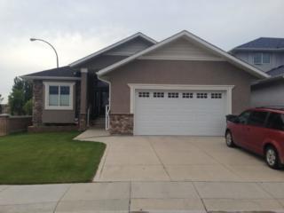 homestay family home cultural bridges saskatoon